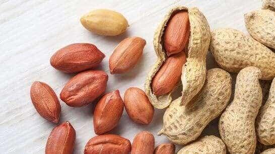 Best nuts for vegan diet peanuts