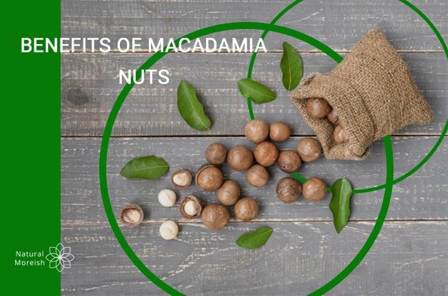 Benefits of Macadamia Nuts