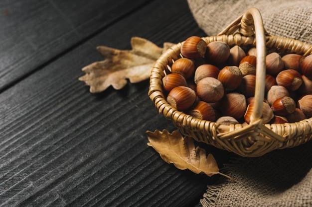 eating Hazelnuts