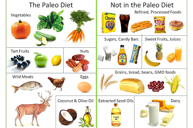 foods to eat vs foods to avoid on the paleo diet