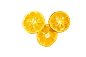 Natural Dried Bitter Orange Slices